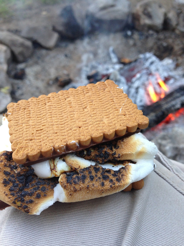 S'more Recipes