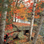 banning state park in the fall