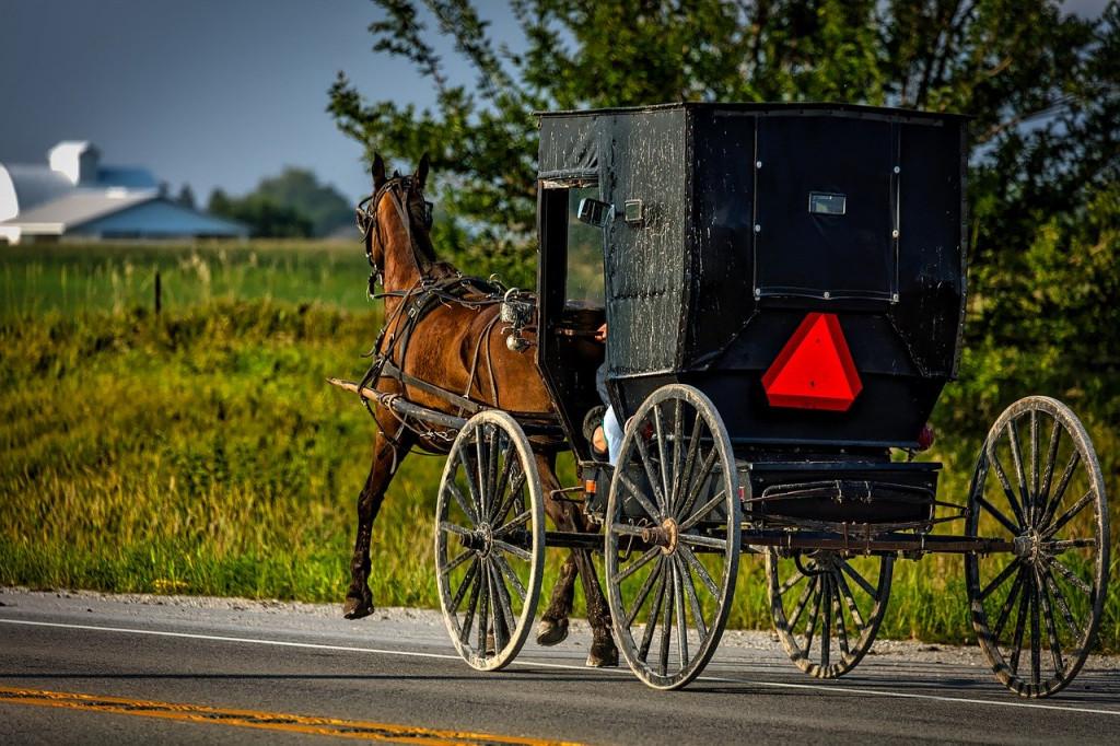 Amish cart