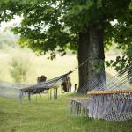 Hammocks in the shade