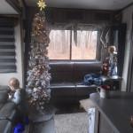 RV Christmas 3