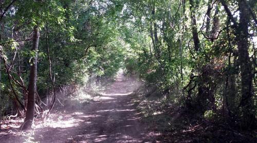 Mill Creek Ranch Resort Trails