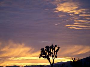 sunset-1740722_640