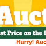 RV Auction