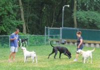 Holly_Shores_Camping_Resort_pet_friendly_campgrounds_nj