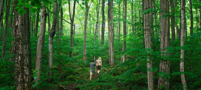 ontario-rv-camping-vacations-705x319