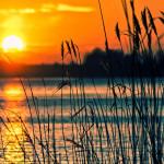 Wilderness Lake Connecticut