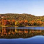 Autumn trees Connecticut