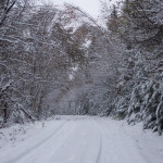 winter-road-1465596-639x426