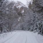 winter-road-1465596-639x426