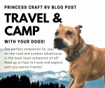 Princess Craft RV Blog Post Dogs