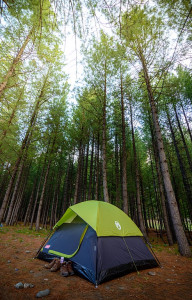 Camping_in_the_forest_-_Kumrat_Valley