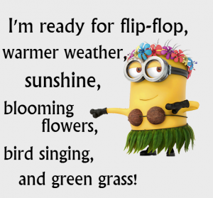 better-weather-minion