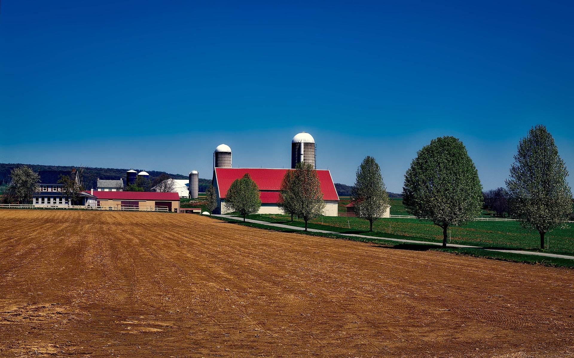 Amish Farm Lands