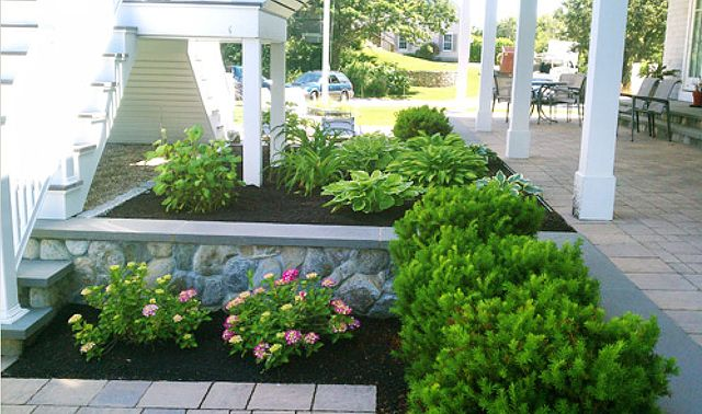 elevated beds with hostas