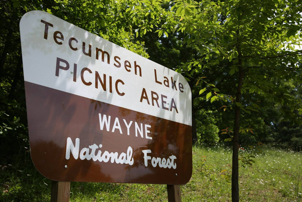 picnic area sign at wayne national forest